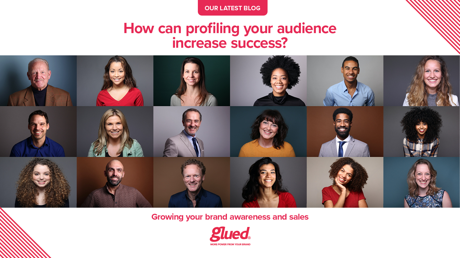 How can profiling your audience increase success?
